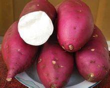 小香薯新鲜小蕃薯红薯地瓜 香薯