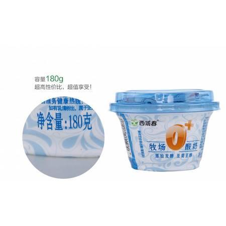 新疆西域春浓缩酸牛奶0+老酸奶 180ml*12罐