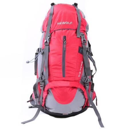 公狼登山包防水折叠双肩背囊50L 户外背包骑行徒步 男女旅行旅游
