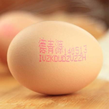 【德青源】新鲜金牌鸡蛋优鲜达宝宝初产蛋16枚两个8枚装喜蛋包邮