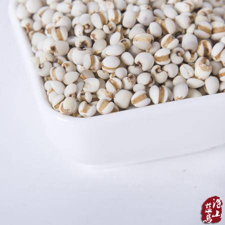深山蓝鸟新鲜优质薏米 天然薏米仁 薏仁米 特级薏米仁五谷杂粮粗