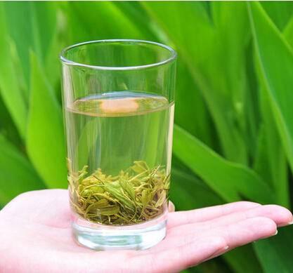 2016年明前新茶春茶绿茶特级丽水香茶松阳银猴高山茶叶50g包邮