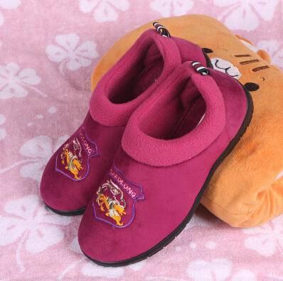 DT-1111420贝香琳 特娇龙冬季棉拖鞋居家居厚底保暖室内地板绣花