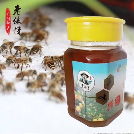 江西兴国特产 纯天然野生蜂蜜 500g包邮 深山蜂蜜