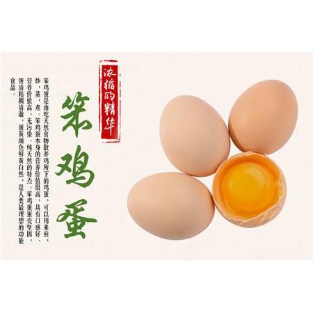 一品茶莊原生态散养土鸡蛋50枚装