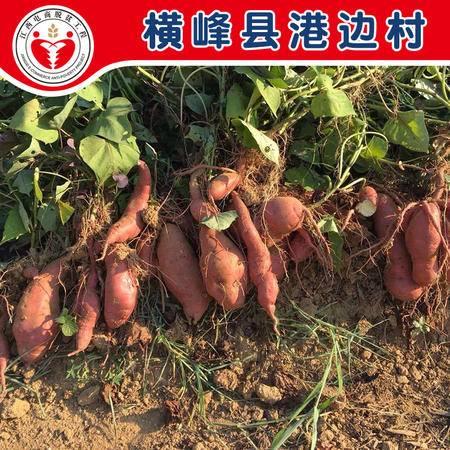 电商公益扶贫 横峰县港边村 红薯5Kg