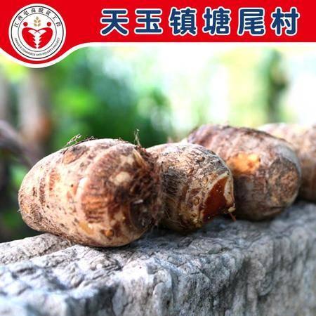 电商公益扶贫 吉安青原 塘尾村 红芽芋 芋头 2500g