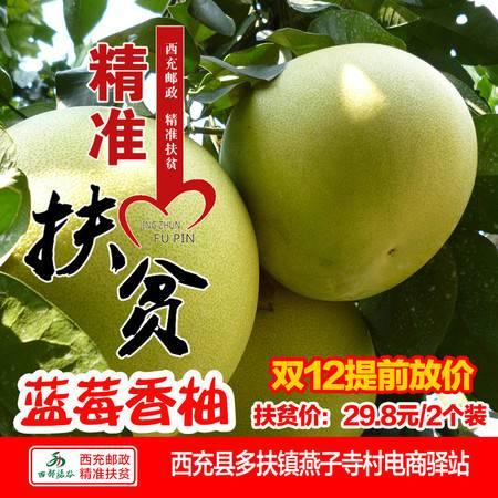 【西充邮政精准扶贫】  蓝莓香柚精品果 2枚装 全国包邮(偏远地区除外)