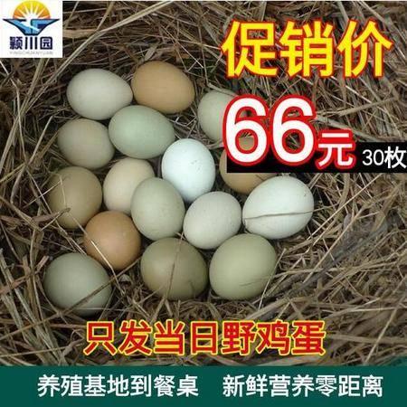 峡江县野鸡蛋30枚七彩山鸡蛋杂粮散养野鸡蛋新鲜土鸡蛋农家草鸡蛋