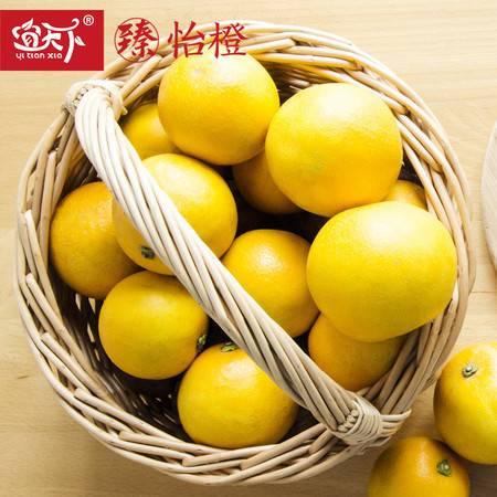 宜天下 17斤精装新鲜水果橙子包邮 永兴冰糖橙产地直供好吃不上火