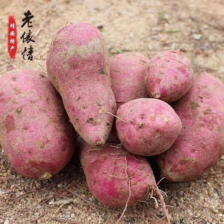 靖安农家新鲜红薯5斤包邮红心红薯番薯地瓜