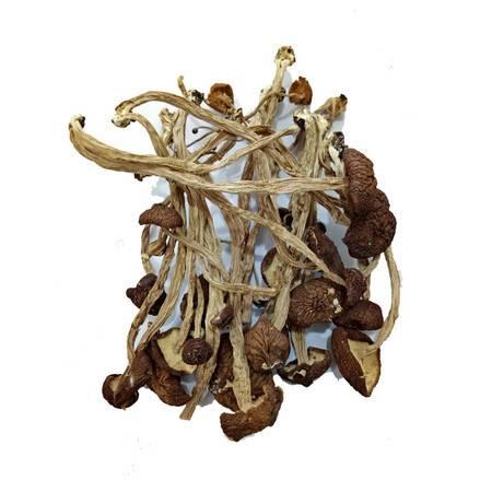 贵溪 香台山 有机茶树菇250g 包邮
