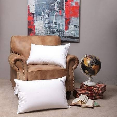 Downia 5%鸭绒枕头家庭常规羽绒枕芯(低枕) 70*45