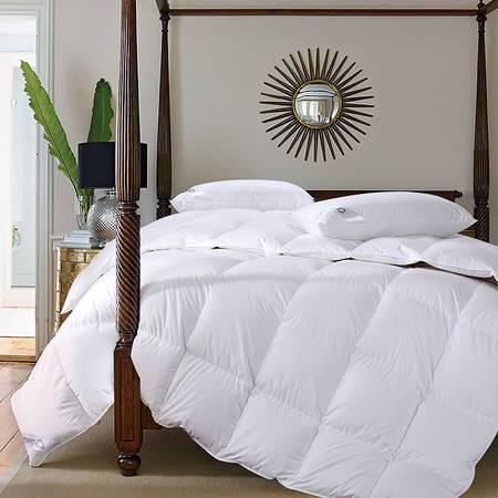 澳洲Downia 80%白鹅绒羽绒被保暖冬季被子被芯200cm*230cm 2600g