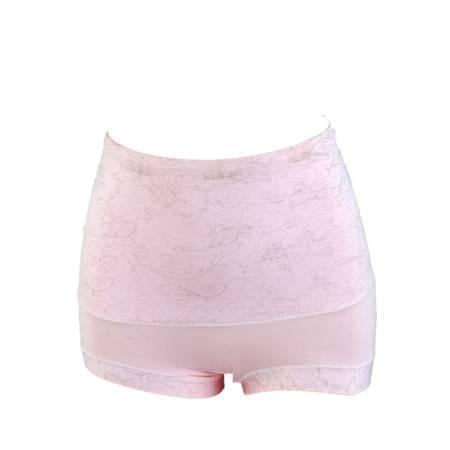 【驼人·康君】接枝棉收腹高腰女款内裤 一条装