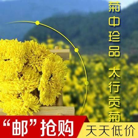【精品试吃】靠山红太行贡菊55g  纯天然无污染  菊花茶 包邮