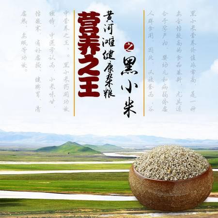 豫之星 黄河滩黑小米500g 营养之王 月子米 品质试吃尝鲜价 补脾养胃 滋养肾气 补虚损