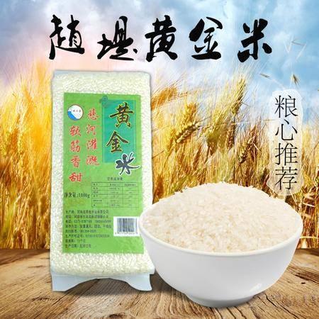 堤上金 黄金米 1000克 软筋香甜 2016年新产大米