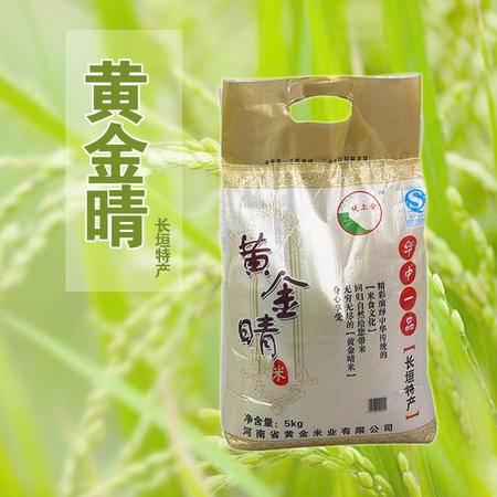 【仅限新乡地区销售】堤上金 赵堤大米 绿色有机精品大米 米质色泽光亮 口感极好 5KG袋装包邮