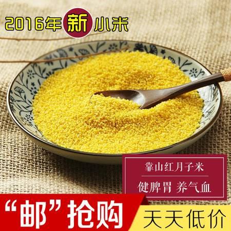 靠山红小米 月子米(袋装)400g 0添加,深山区,营养丰富 熬粥浮油 唯有太行 靠山红的小米
