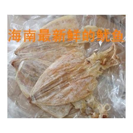 创华鱿鱼干 绿色野生鱿鱼 富含有益微量元素