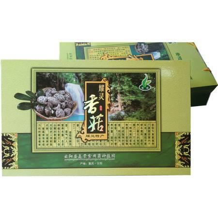云阳特色产品  耀灵香菇