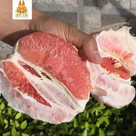 草鲜禾堂 红心蜜柚5斤装2颗装