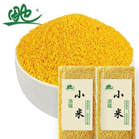 田也小米400克 农家黄小米 五谷杂粮 粮油米面 粗粮 田也小香米400g