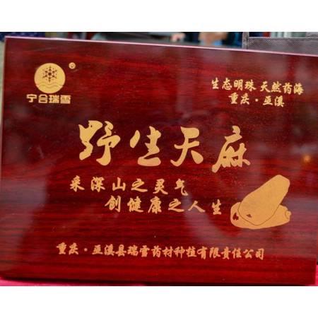 重庆巫溪瑞雪野生天麻礼品盒500克