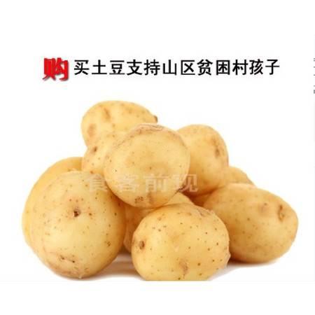 巫溪洋芋2500g/每箱
