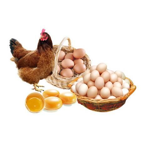 青阳馆  平云牧业  皖南三黄鸡鸡蛋(皖南土鸡) 30枚/盒