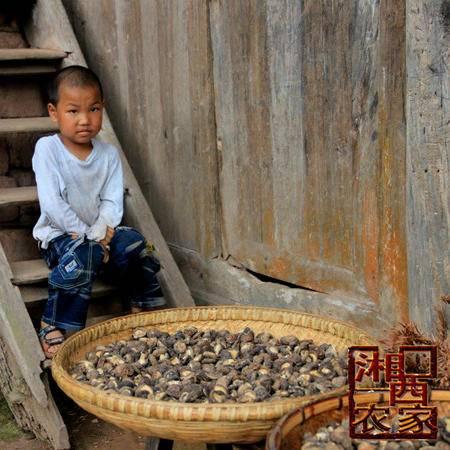 湘西山区农民自采野生干香菇 土特产有机小香菇野香菇 蘑菇干货200g