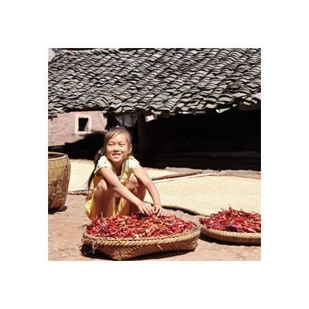 湖南特产 湖南本地农民自种干红辣椒/香辣椒/香香辣辣 辣椒调料100g