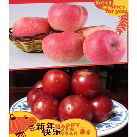 关李牌 水果套餐 5斤苹果+5斤李子 健康伴侣 绿色无公害