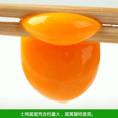 【忠县馆】忠县邮政助农  农家散养土鸡蛋 30枚一盒