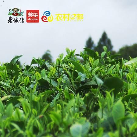 茶叶,高山茶,手工绿茶