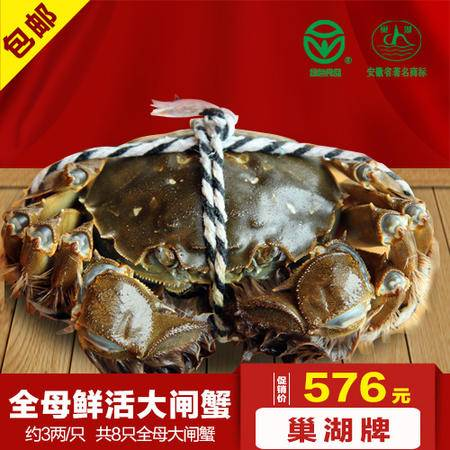 巢湖牌约3两/只全母大闸蟹8只礼盒装