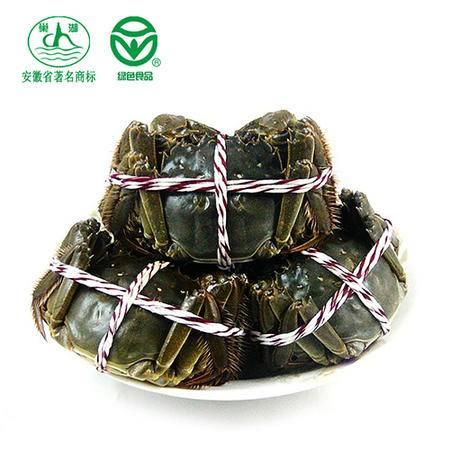 [巢湖牌]大闸蟹公蟹约3两母蟹约2两螃蟹鲜活水产买8只送2只礼盒装