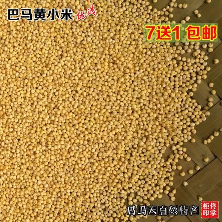 7件包邮7送1 糯小米大黄米黏小米粟米广西杂粮黄小米香糯500克