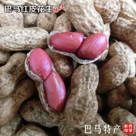 16年新货 稀少小粒花生 巴马农家自种自晒生花生红衣有机红花生米