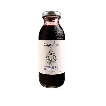 禾韵蓝莓果汁饮料