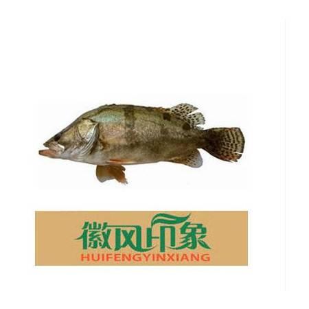 广德馆 央视推荐 徽风印象 徽州臭鳜鱼 黄山臭鳜鱼8-9两
