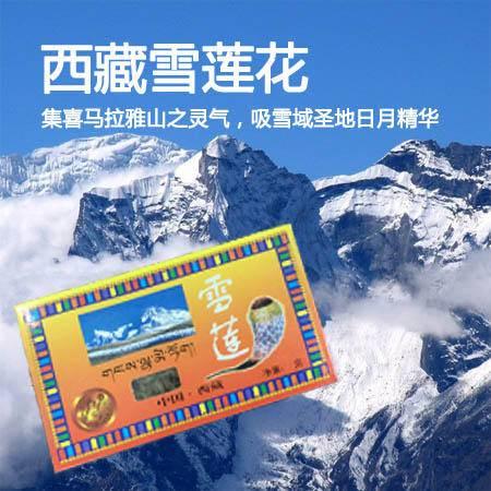 西藏特产  日喀则聂拉木野生雪莲