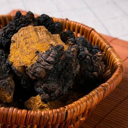西藏特产 桦褐孔菌林芝桦树茸
