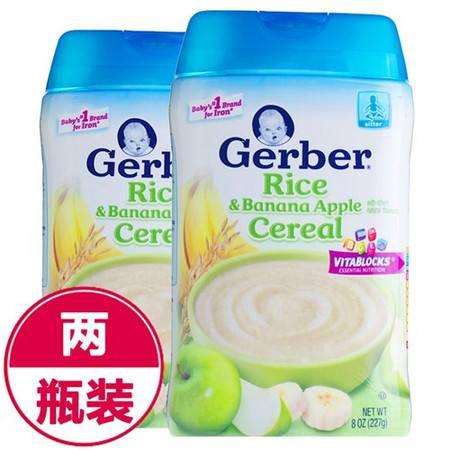 美国嘉宝Gerber混合水果大米米粉2段(6个月以上)227g*2
