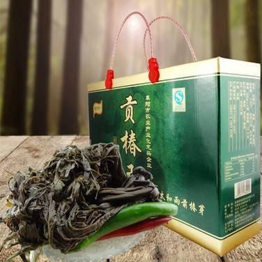 礼盒 安徽土特产太和贡椿新鲜腌制咸菜香椿头香椿嫩芽1000g