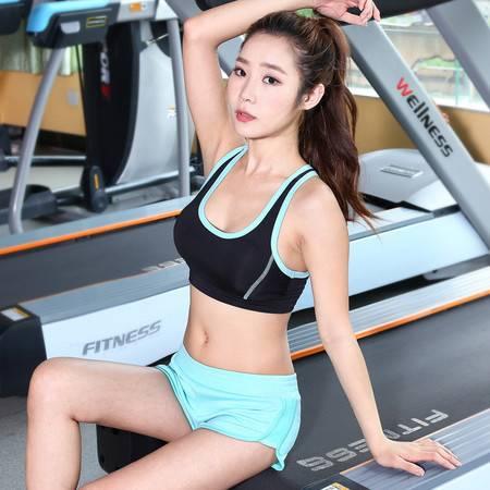 包邮 韵格p25 专业训练健身热裤瑜伽裤女短裤透气跑步速干运动女弹力短裤