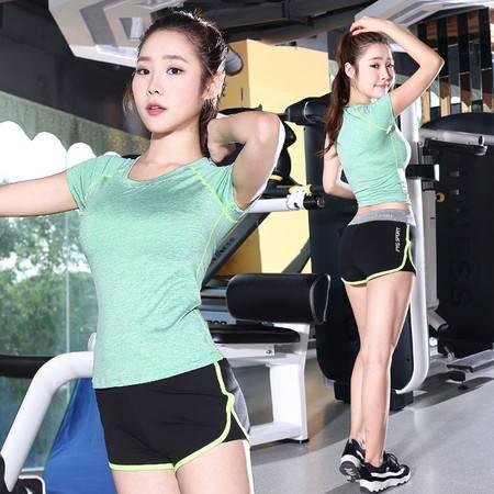 包邮 韵格 瑜伽服套装 短裤二件套 舞蹈练功跑步健身服女瑜伽服两件套