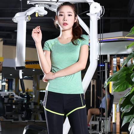 包邮  韵格 假两件运动长裤套装弹力修身健身套装女速干T恤短袖跑步瑜伽服女