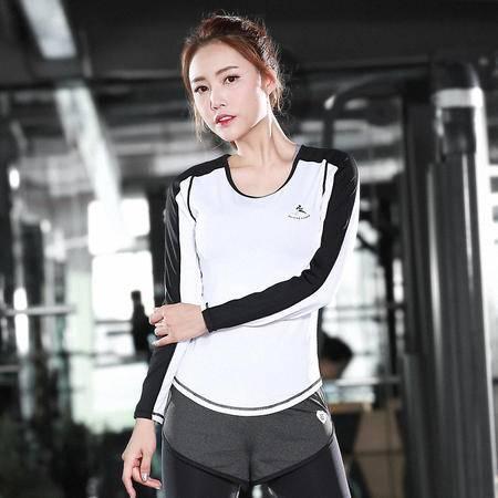 包邮 韵格s53 瑜伽服长袖女 速干修身健身上衣春夏t恤运动服